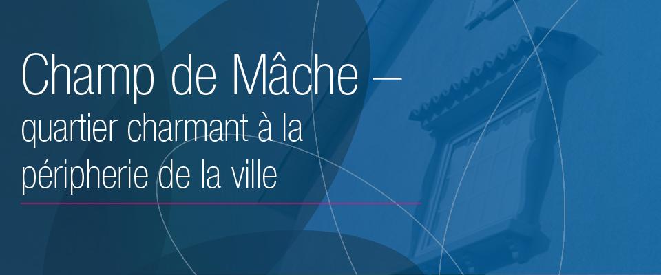 mache_mobile
